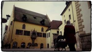 Am alten Rathaus in Regensburg
