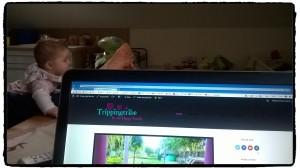 Trippingtribe und hippo