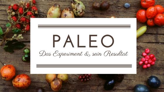 Paleo Das Experiment und sein Resultat Titelbild