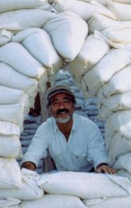 Nader Khalili Gründer von CalEarth