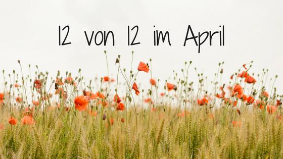 12 von 12 im Aprll Titelbild