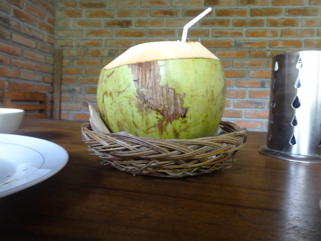 Frische Kokosnuss zum Trinken
