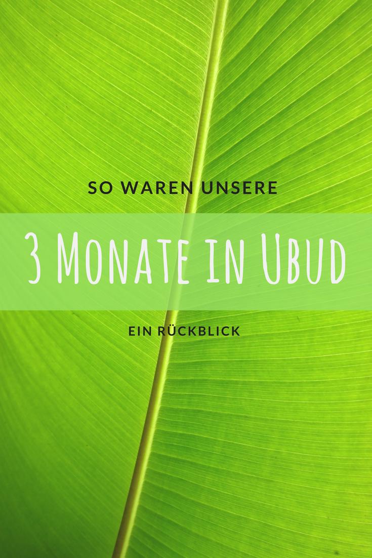 So waren unsere 3 Monate in Ubud - ein Rückblick