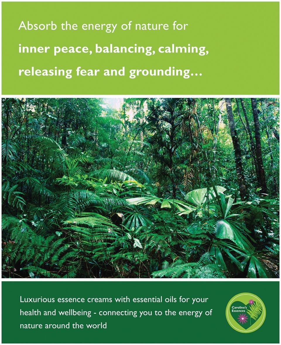 Poster mit üppigem Regenwald