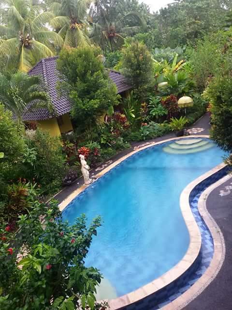 Ubud unser Haus mit Pool