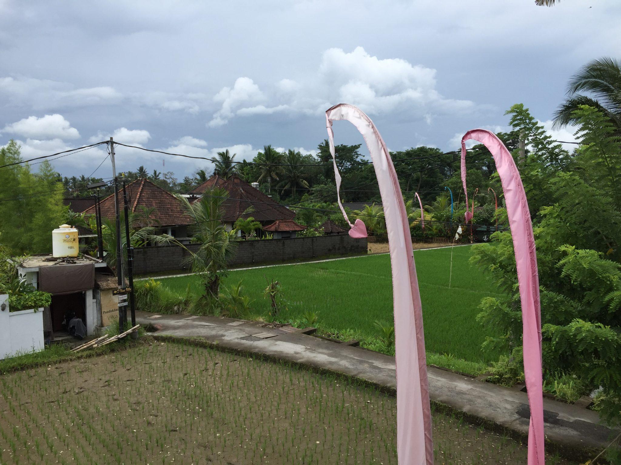 Grauer Himmel auf Bali