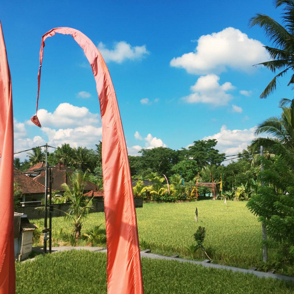 Ein sonniger Tag auf Bali